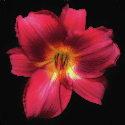 Photograph - Day Lily Dark Red Painterly by Denise Beverly