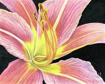 Painting - Bright As Daylily by Tammie Painter
