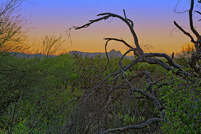 Photograph - Days End H43 by Mark Myhaver
