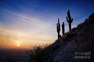 Photograph - Days End In The Desert by Scott Kemper