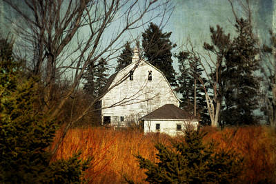 Photograph - Days Gone By by Julie Hamilton