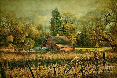 Barnyard Mixed Media - Days Gone By by Beve Brown-Clark Photography