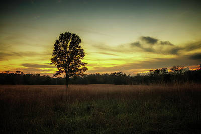 Photograph - Days Last Light by Ryan Wyckoff
