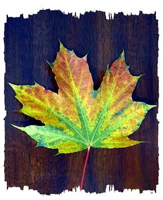 Days Of Autumn 2 Art Print
