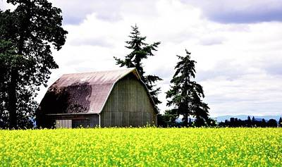 Photograph - Dayton Barn And Field 25314 20x30 by Jerry Sodorff