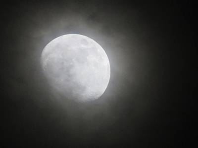 Photograph - Daytona Moon by Kathy Long