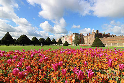 Photograph - Dazzling Coloured Flowers At Hampton Court by Julia Gavin