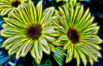 Digital Art - Dazzling Daisies  by D Hackett