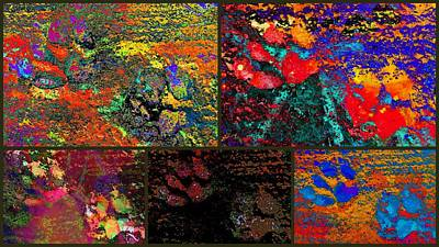 Digital Art - Dazzling Paw Print Collage by Dorothy Berry-Lound