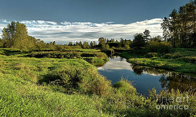 Photograph - De Boville Slough At Pitt River Dike by Rod Jellison