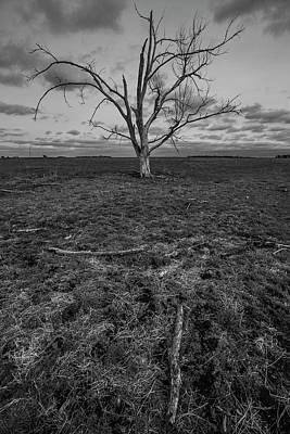 Photograph - Dead  by Aaron J Groen