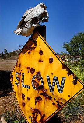 Cow Photograph - Dead End by Craig Incardone