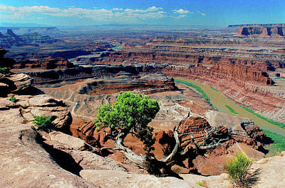 Photograph - Dead Horse Point #2 by Frank Houck