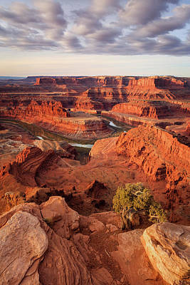 Photograph - Dead Horse Point Vertical by Johnny Adolphson