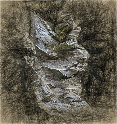 Photograph - Dead Leaf by Vladimir Kholostykh