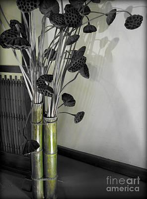Photograph - Dead Lotuses by Eena Bo