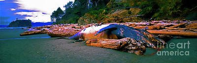 Photograph - Dead Pilot Whale  Olympic National Park Washington State  by Tom Jelen