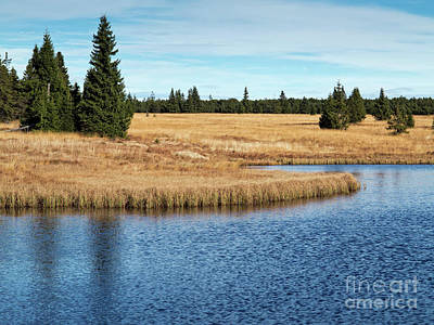 Photograph - Dead Pond In Ore Mountains by Michal Boubin