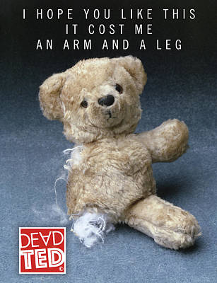 Mixed Media - Dead Ted Arm And Leg by Tim Nyberg