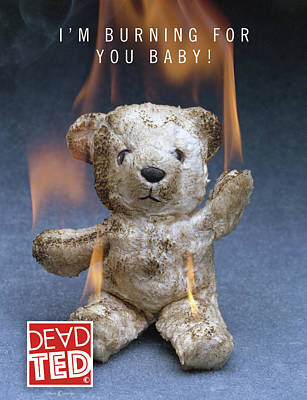 Mixed Media - Dead Ted Burning by Tim Nyberg
