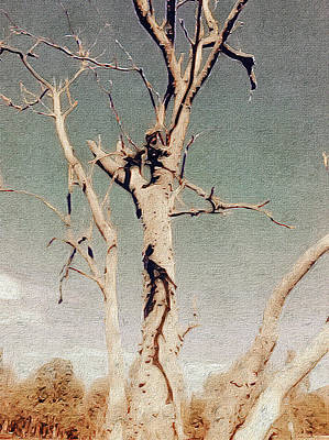 Digital Art - Dead Tree, Outback. by Judith Chantler