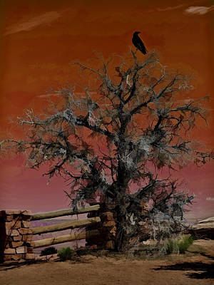 Photograph - Dead Tree Sunset by Wes and Dotty Weber