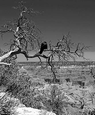 Dead Tree With Crow Art Print by Michael Perlin