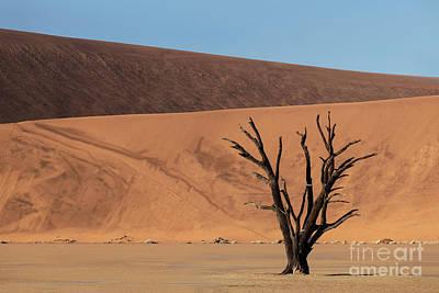 Photograph - Dead Vlei Awakens - Namibia, Africa by Sandra Bronstein