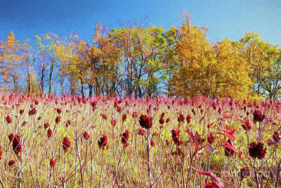 Poison Sumac Painting - Deadly Beauty In The Blue Ridge Ap by Dan Carmichael