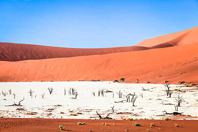 Photograph - Deadvlei 2 by Gregory Daley  PPSA