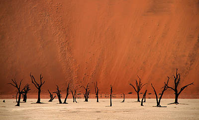 Deadvlei Art Print by Hans-wolfgang Hawerkamp