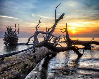 Photograph - Deadwood Morning by Alan Raasch