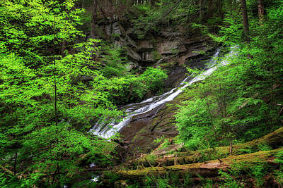 Photograph - Deans Ravine Falls by Bill Wakeley