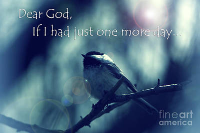 Photograph - Dear God If I Had Just One More Day  by Cathy Beharriell