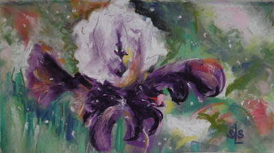 Pastel - Dear Iris by Sandra Lee Scott