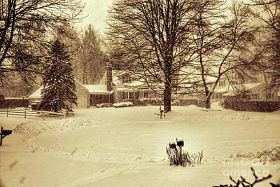 Photograph - Deart Winter by Rick Bragan
