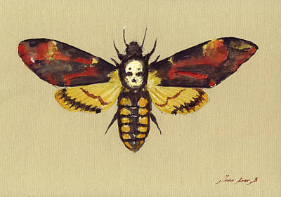 Hawk Painting - Death Head Hawk Moth by Juan Bosco