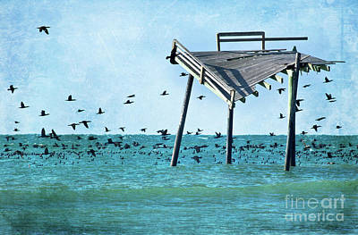 Photograph - Death Of A Friend - Frisco Pier Outer Banks by Dan Carmichael