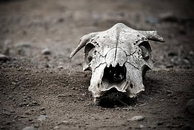Photograph - Death by Ryan Heffron