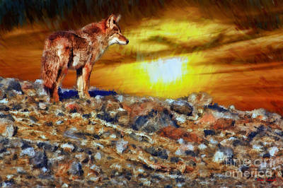 Photograph - Death Valley Coyote Sunset by Blake Richards