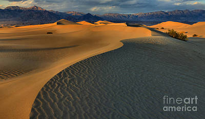 Photograph - Death Valley Desert Curves by Adam Jewell