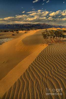 Photograph - Death Valley Dunes by Adam Jewell