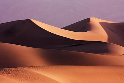 Golden Photograph - Death Valley Dunes by Matt  Trimble
