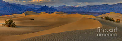 Photograph - Death Valley Dunes Panorama by Adam Jewell