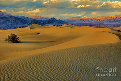 Photograph - Death Valley Dunes Sunset Glow by Adam Jewell