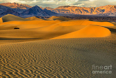 Photograph - Death Valley Golden Hour by Adam Jewell
