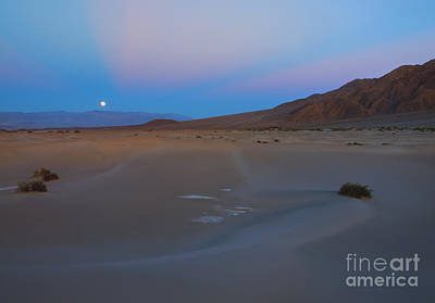 Death Valley Moonrise Print by Mike Dawson