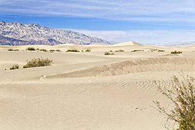 Photograph - Death Valley Sand Dunes 1 by Jim Moss