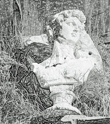 Statue Of David Photograph - Decay In The Hay by Joe Jake Pratt