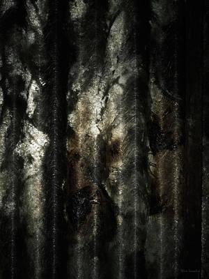 Photograph - Decay by Wim Lanclus